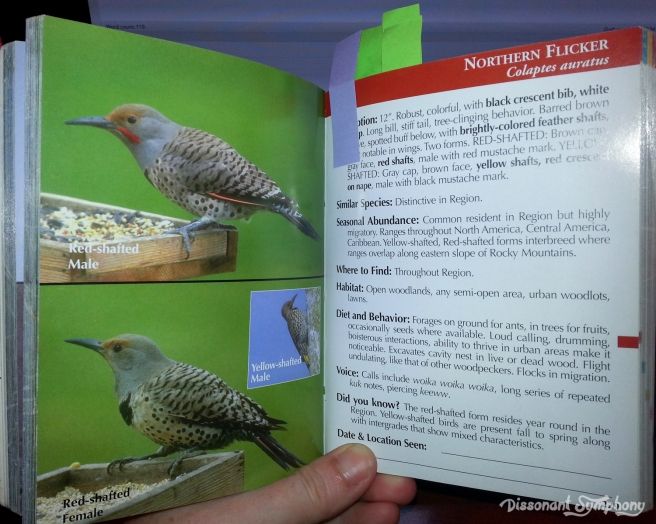 Birds of the Puget Sound Region