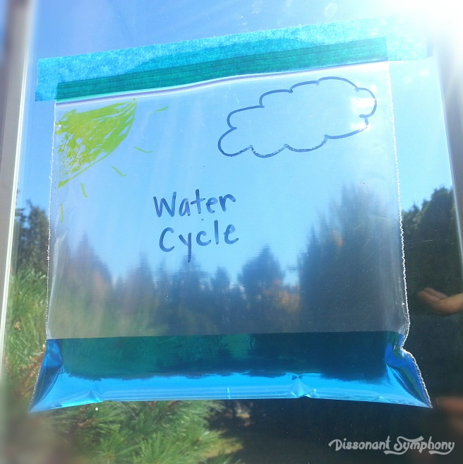 Water Cycle in a Bag - Dissonant Symphony
